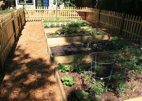 raised beds benefit flowers vegetables mississippi