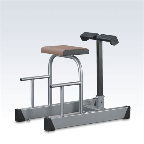 roman chair hyperextension bench roman chair hyperextension horizontal www schnell