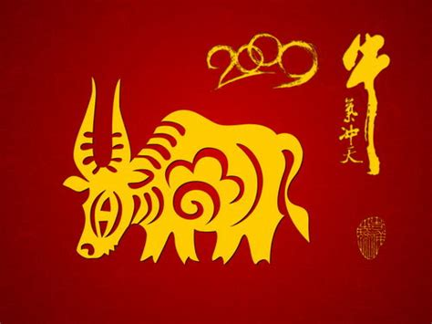 new year of the ox 2009 new year of ox 2009 wallpapers pack