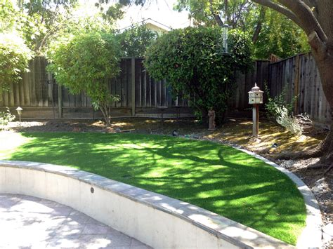 backyard ideas in allgreen grass
