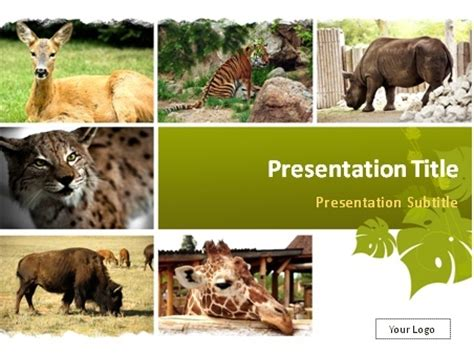 powerpoint templates zoo free download wild animals powerpoint template