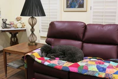 molly on the couch phyl s blog phyl s quilts things