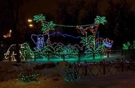 Getting Into The Spirit Of Christmas Bow Valley Credit Calgary Zoo Lights Hours