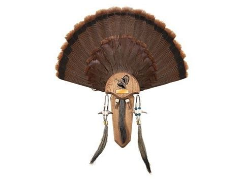turkey fan and beard mounting kit h s strut three beard turkey mounting kit