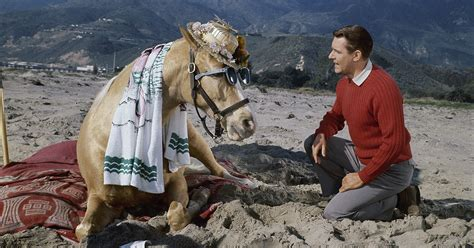 heres    remember alan young     mister ed