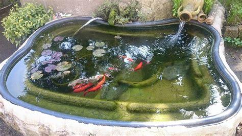 vasca per pesci da giardino vasca da bagno laghetto vasca da bagno realizzata in