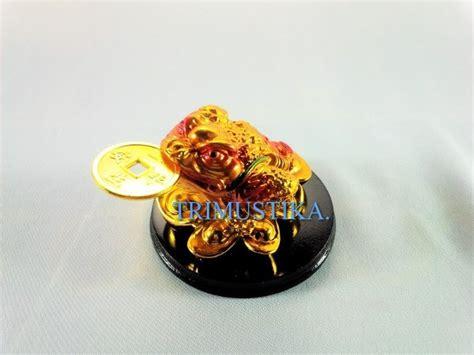 Celana Katak 1 jual beli patung katak rejeki emas alas kayu fengshui