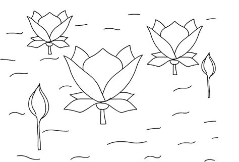 coloring page lotus flower free printable lotus coloring pages for kids