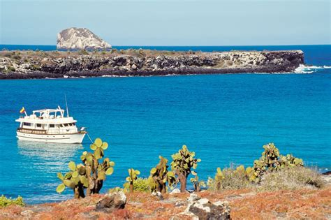 galapagos islands boats land based galapagos tours or a traditional cruise