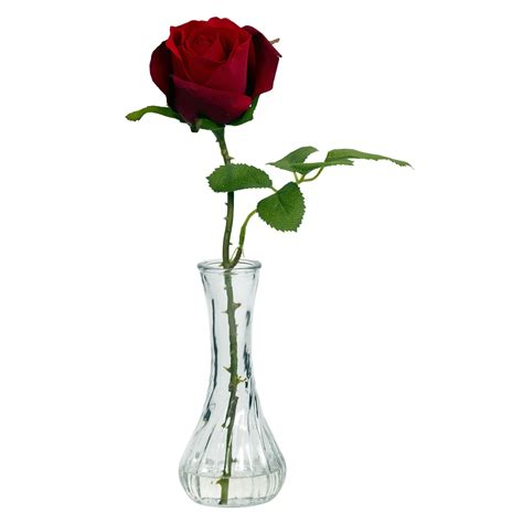 A Vase Of Roses by 1269 S3 Wbud Vase Jpg 1 500 215 1 500 Pixels Reference For Room Ideas Best