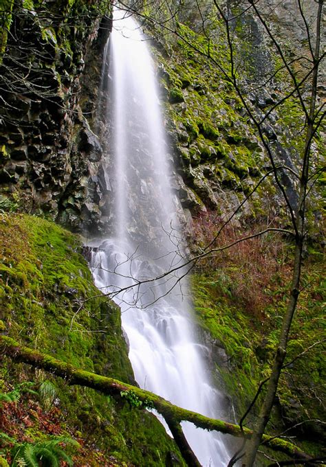 cabin creek cabin creek falls river county oregon northwest