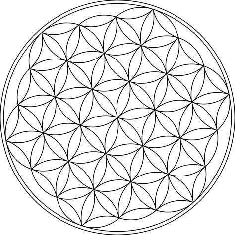 pattern flower of life clipart flower of life symbol