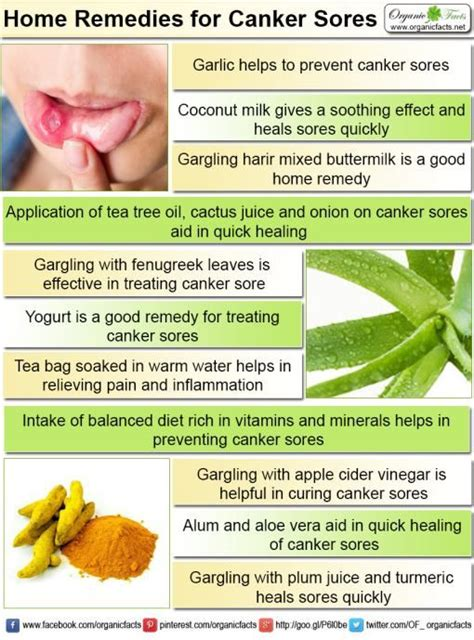 remedies for canker sores canker sores and canker sore