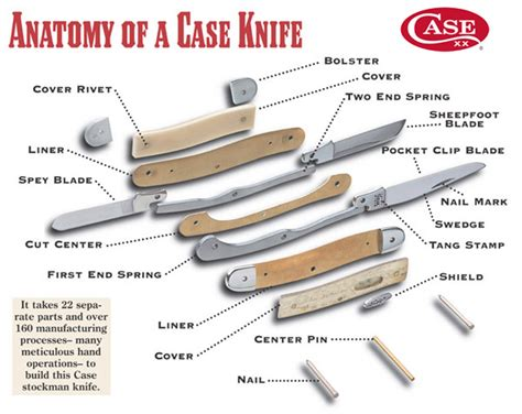 parts of a folding knife w r college knife anatomy