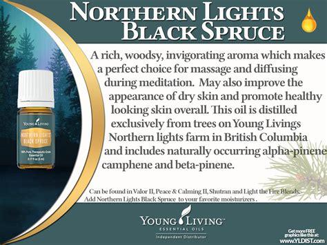 northern lights black spruce essential living essential oils northern lights black spruce