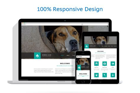website templates for kennels animal shelter web template