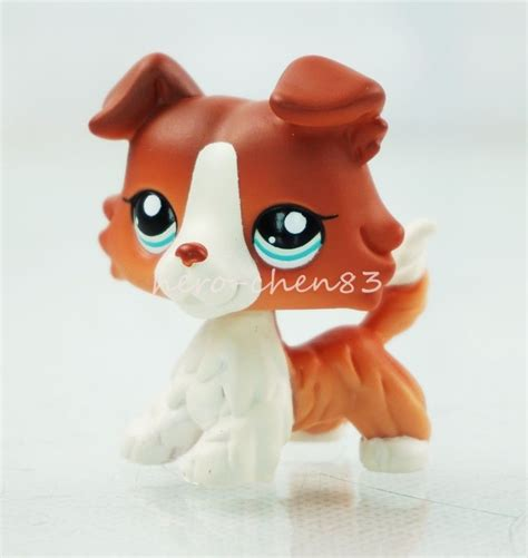 ebay lps dogs hasbro littlest pet shop lps 1542 brown white collie puppy blue ebay