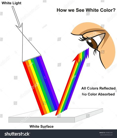 do we in color we colors how do we see color color originates in light
