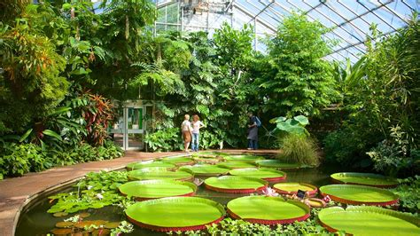Edinburgh Botanic Gardens Royal Botanic Garden Edinburgh Scotland Attraction Expedia Au