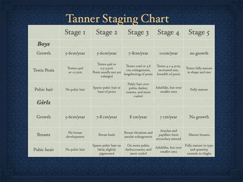 male stage tanner scale tanner stages images usseek com