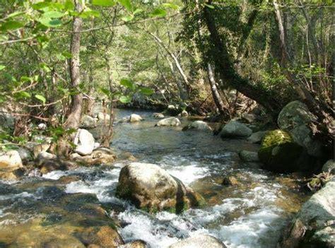 licenza pesca acque interne pesca acque interne la regione vara i permessi temporanei