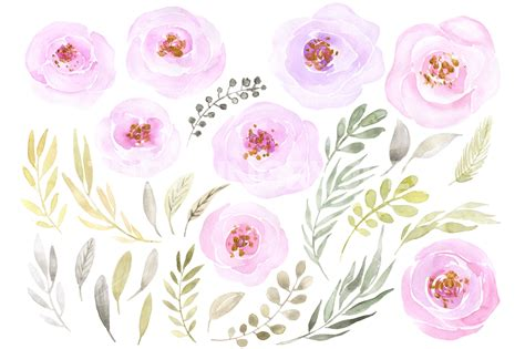 Light Pink Backgrounds by Watercolor Light Pink Png Flowers By Watercolorflowers