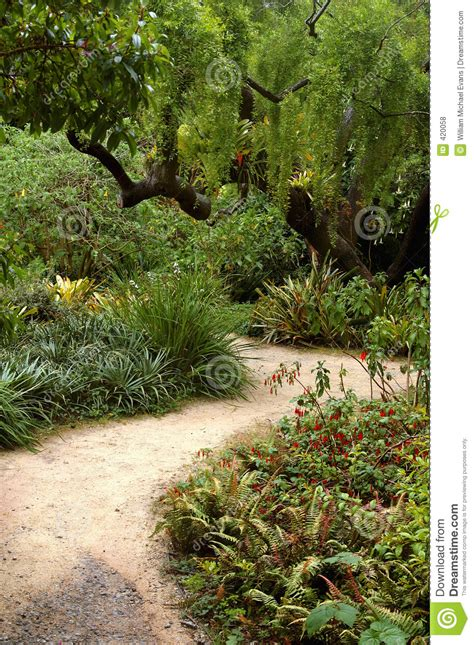 Sf Botanical Garden Map San Francisco Botanical Garden Royalty Free Stock Photos Image 420058
