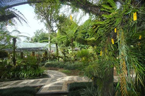 Bali Botanic Garden Asian Itinerary Bali Botanic Gardens