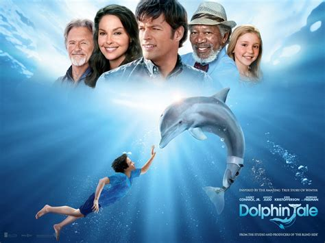 day real story day true story dolphin tale it is what it is