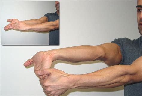 forearm exercises and fitness weight lifting