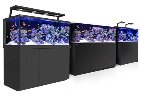 aquarium design yorkshire red sea max fish tanks mens health network
