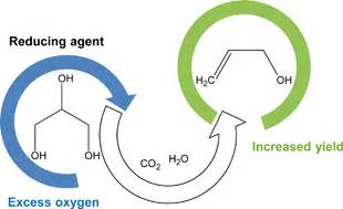 catalytic conversion of glycerol to allyl alcohol effect
