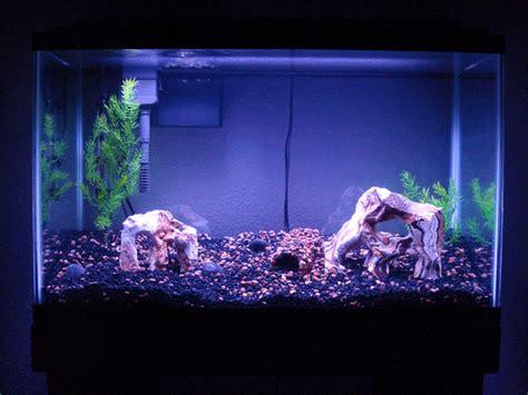 aquarium lunar led lights aquarium gif find share on giphy
