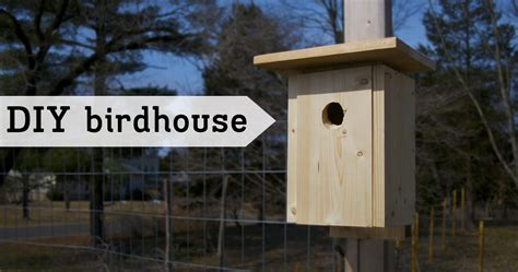 easy bird house diy simple bird house outlaw garden