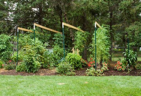 Strawbale Garden by Sg517 Straw Bale Gardening Part 3 Wrap Up