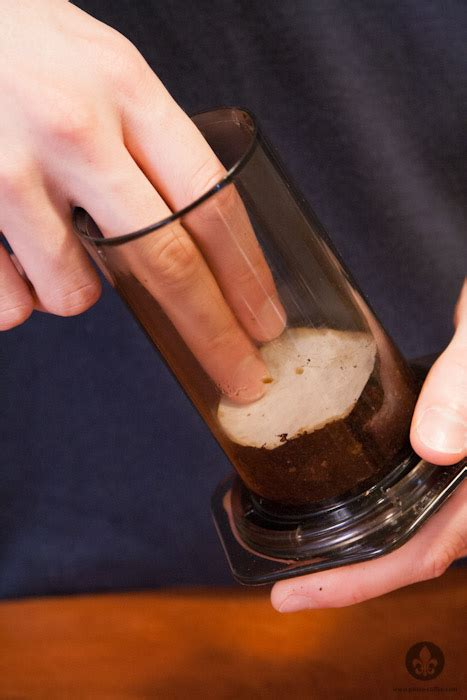 What Everyone Ought to Know About Iced Coffee & Cold Brew   Prima Coffee