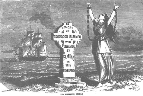 annals of the famine in ireland in 1847 1848 and 1849 books ireland and sins of the famine celtic