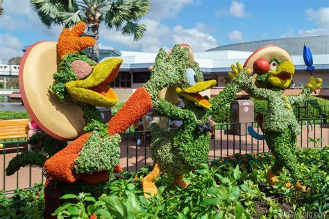 Flower And Garden Festival Flower And Garden Festival Dunneiv Org