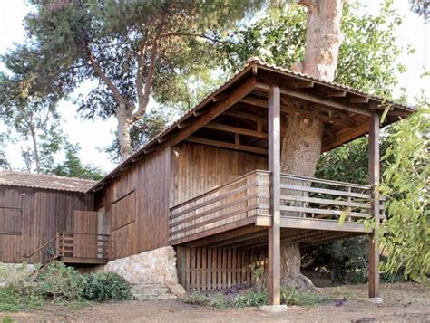 a house among the trees modern house designs tree houses trendir