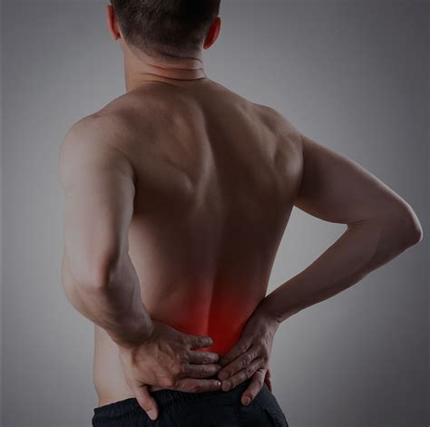 pligg banca pligg content management system prevent back injury pain