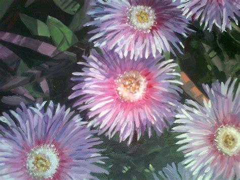 fiori giglio manis fiori dell isola giglio meloarte