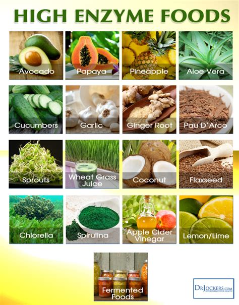 Enzymes In Diet Detox by How To Use Systemic Enzymes For Cancer Drjockers