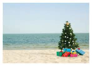 christmas tree on beach tag palm press
