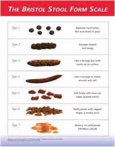 Bristol Stool Chart For by Bristol Stool Scale Pdf Related Keywords Bristol Stool