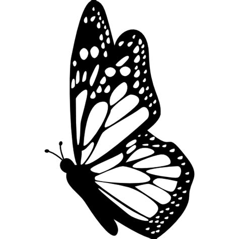 butterfly pattern png butterfly side view with detailed wings free animals icons