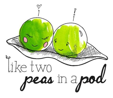Two Peas In A Pod Meme - expressions idiomatiques anglaises expressions