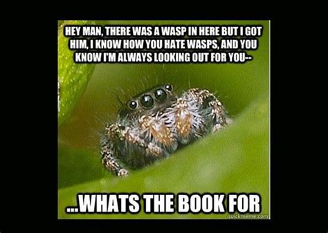 Meme Spider - house spider meme pictures to pin on pinterest pinsdaddy