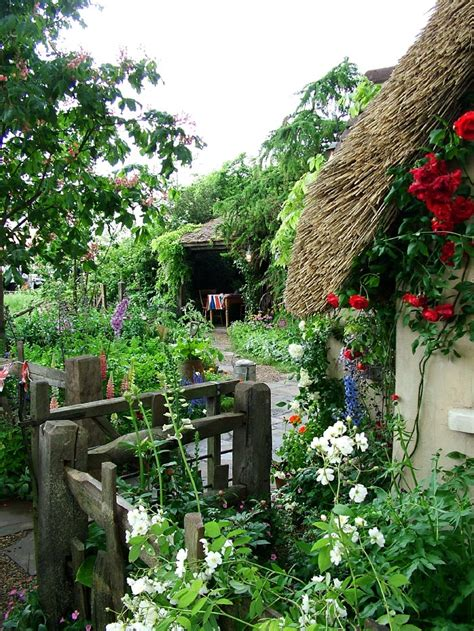 Garden Cottages by Cottage Garden Theme Your Garden By Jersey Plants Direct