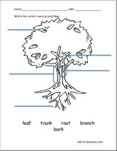 Worksheet ESL Vocabulary  Tree Preview 1 sketch template