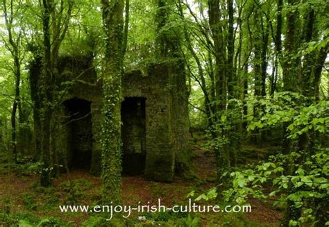 Castles Of Ireland? How To Build A Medieval Castle